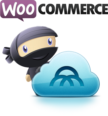 woocommerce websites